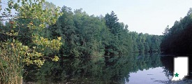 Greene - Sullivan State Forest - RV Park of Dugger, IN