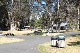 Namakani Paio - Hawaii Volcanoes National Park - RV Park of Volcano, HI