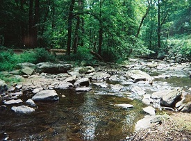 Owens Creek - Catoctin Mountain National Park - RV Park of Sabillasville, MD